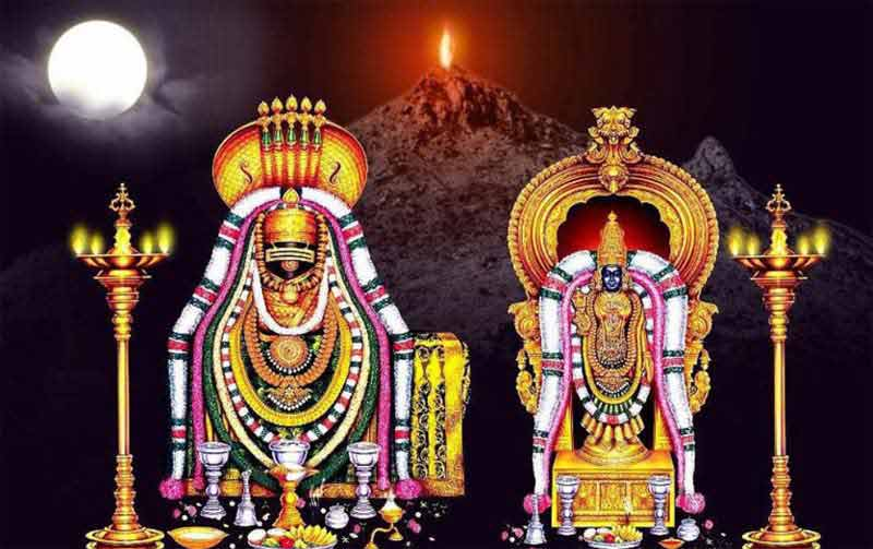 Thiruvannamalai Temple with Annamalayar
