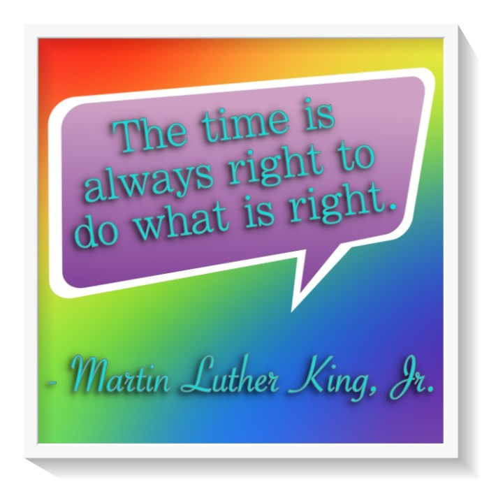 martin-luther-king-jr-01-713-x-713