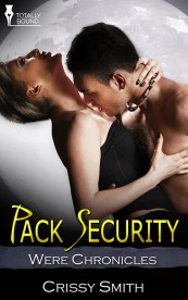 packsecurity_800