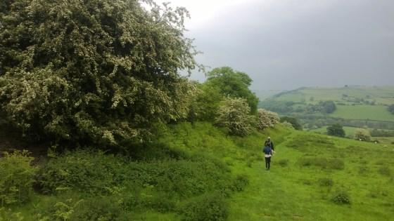 Half term May 2014 Offa's Dyke Path - Copy