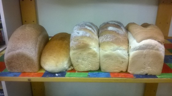 Shelf of fresh loaves