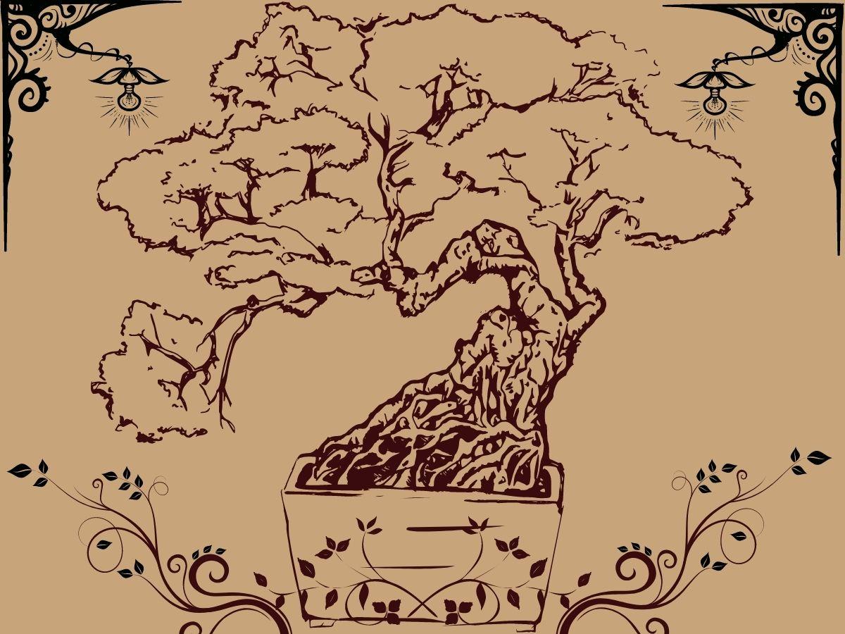 the bonsai