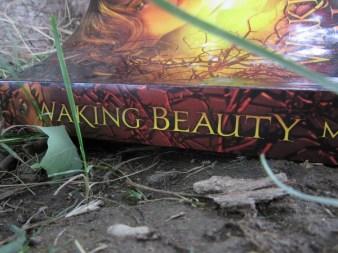 fantasy-great-read