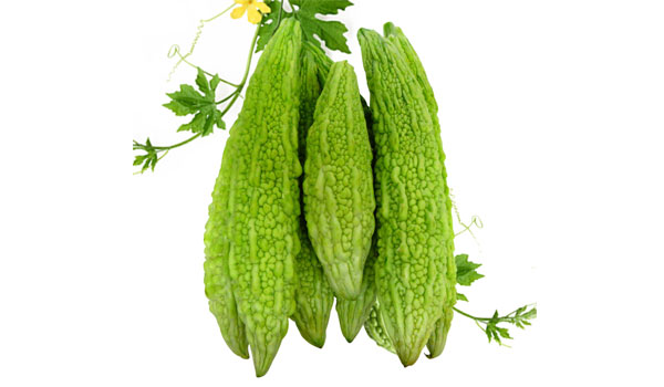 Bitter Gourd - Home Remedies for Sneezing