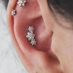 Different Ear Piercings Diagram Harley Softail Frame Types Of The Complete List What Piercing Jewelry Should I Get For My Ears