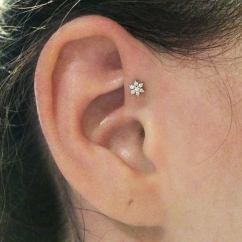 Cartilage Piercing Diagram What Is A Sankey Different Types Of Ear Piercings The Complete List Forward Helix