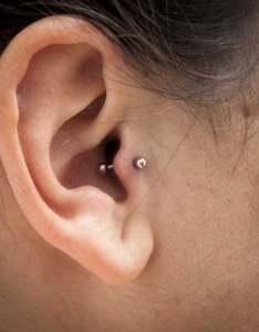 Tragus piercing pain also  how much do they hurt rh authoritytattoo
