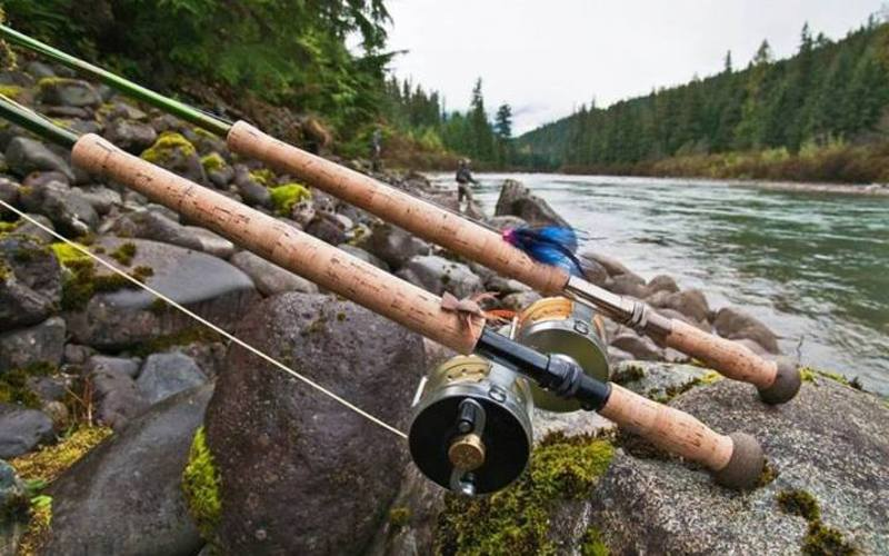 What to look for when buying a fly fishing rod for Favorite fishing rods