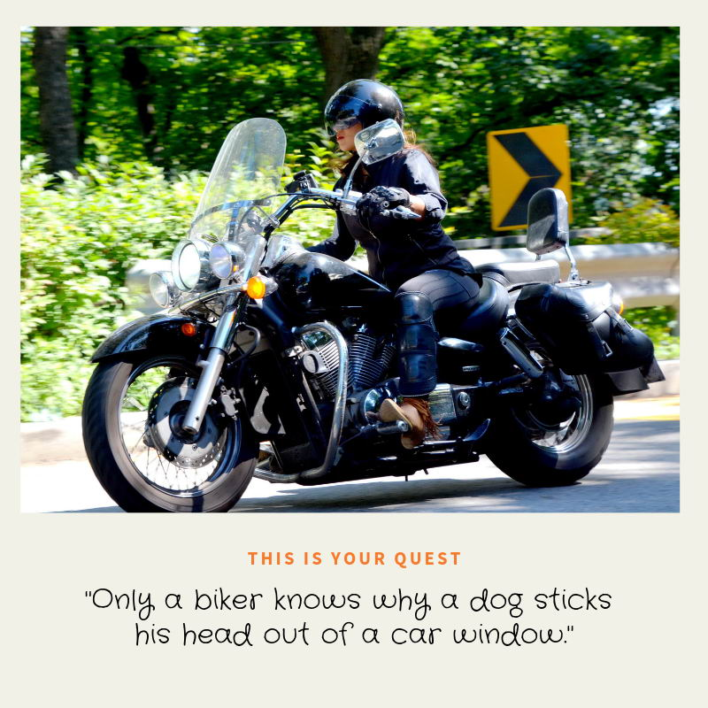 Author Joanne Reed This is your quest Riding motorbikes makes me happy