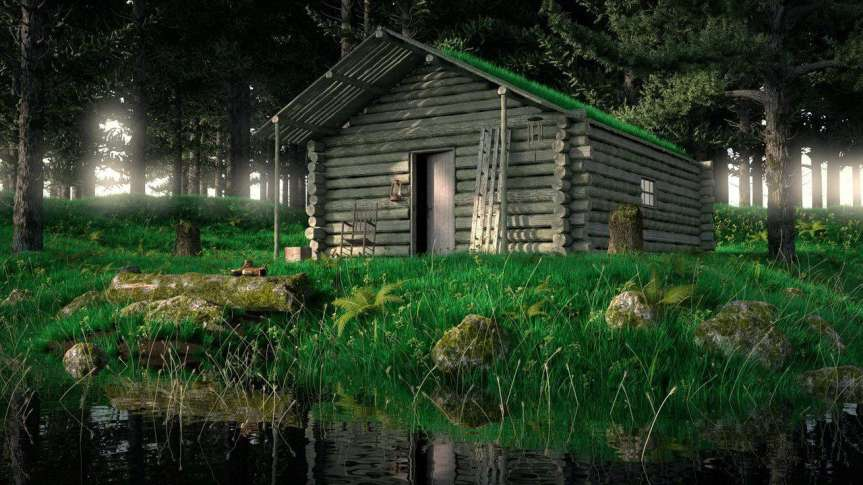 Author joanne reed this is your quest the art of being still cabin true solitude
