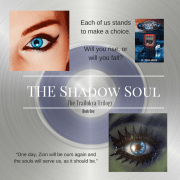 The Shadow Soul