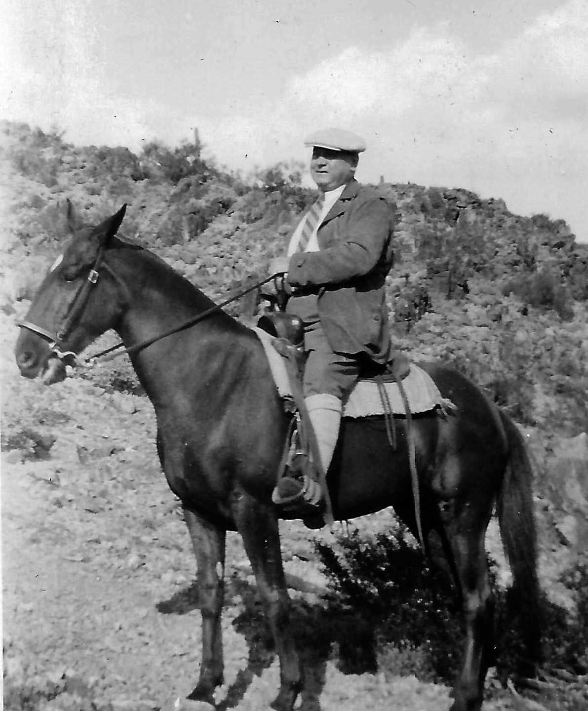 Engineer on horseback: New memoir