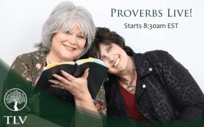 Proverbs LIVE: Proverbs 19:4