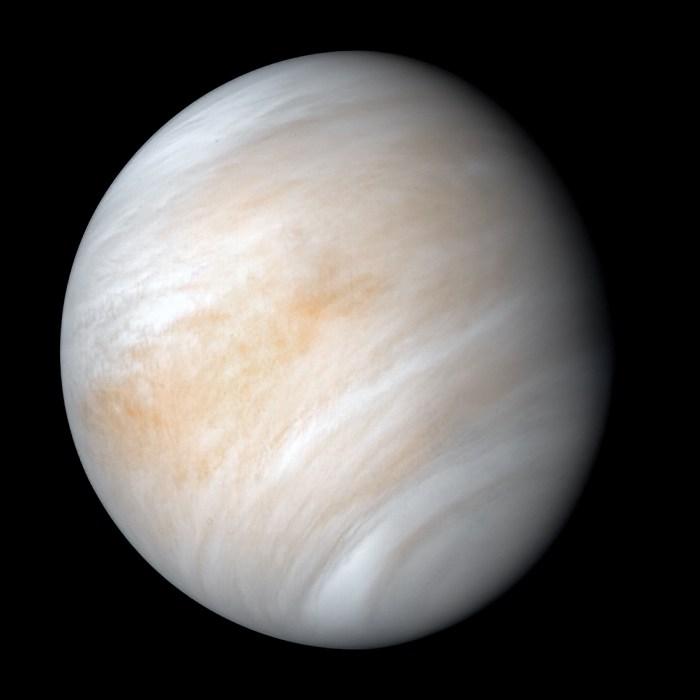 Venus life astrobiology