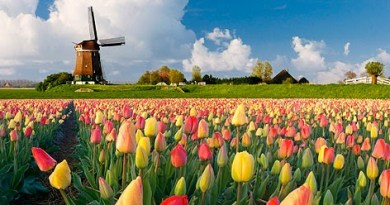 welcome to holland