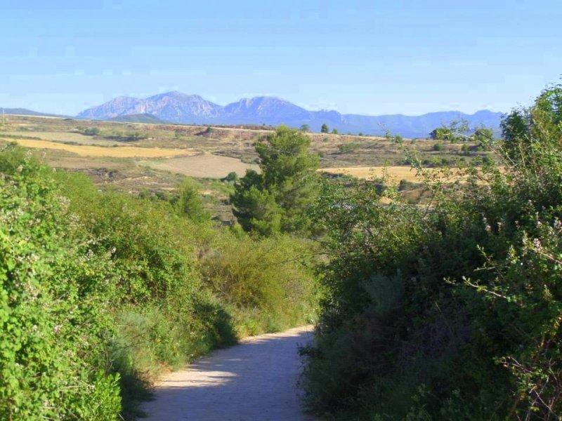 Trekking the Camino de Santiago de Compostela with Autism mountains