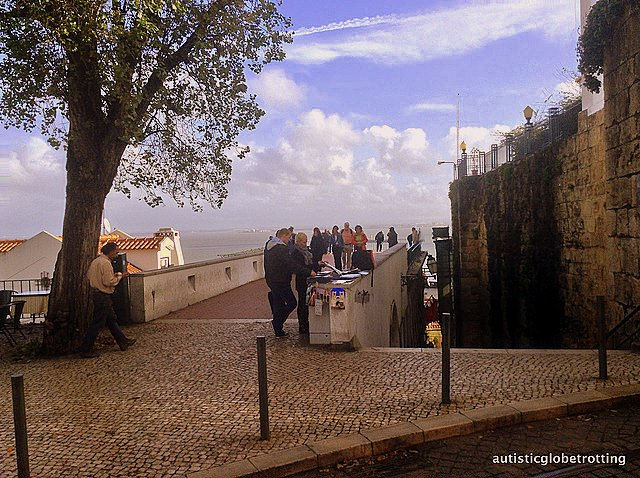 Taking Kids with Autism to Lisbon Portugal tree