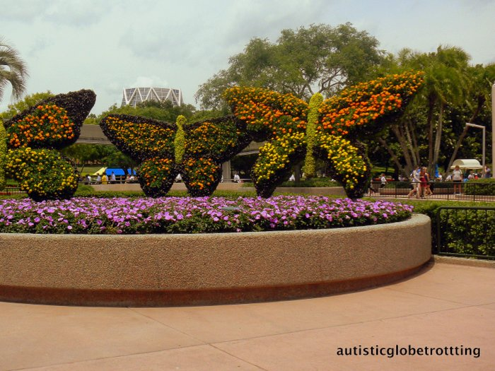 Clothing Tips When Taking Kids with Autism to Disney World butterfly