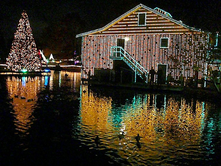Best Thanksgiving Destinations for autism dollywood lights