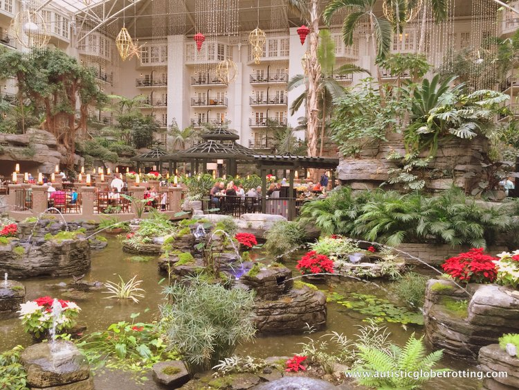 Christmas Stay at the Gaylord Opryland Hotel water