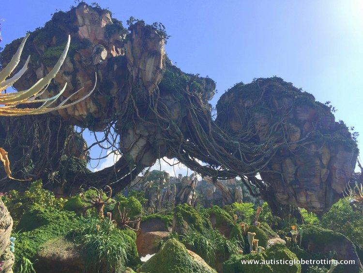 Pandora world of avatar high