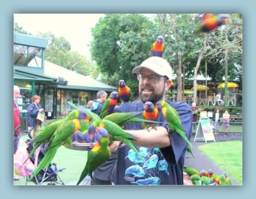 Q&A with Dr Stephen Mark Shore- Autism Advocate and Author parrots