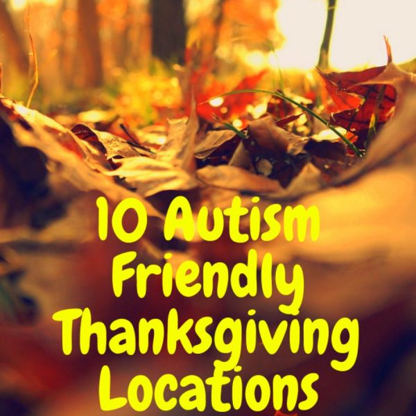 iving Destinations for autism pin