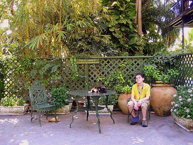 Taking Kids to the Hemingway House Museum sitting