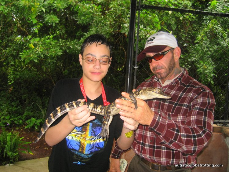 Best Family Friendly Activities in Orlando Apart from Theme Parks gator