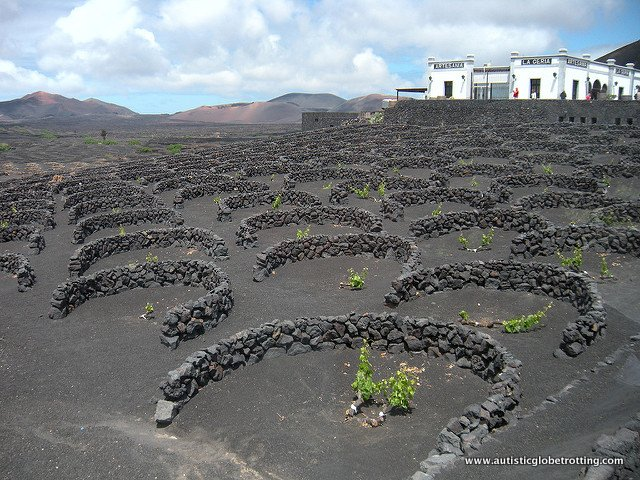 Top Five Family Activities on Lanzarote Island landscape