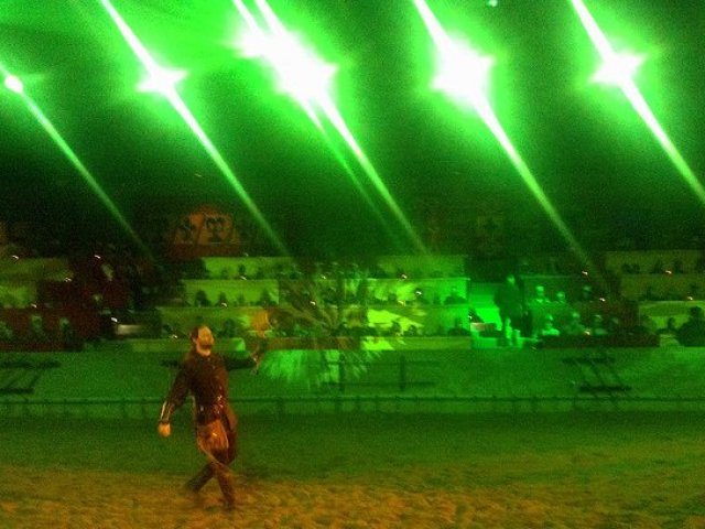 Taking Your Kid with Autism to Medieval Times green