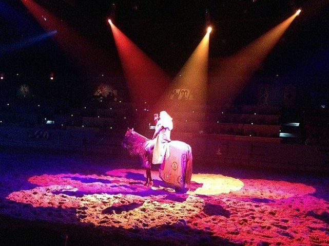 Taking Your Kid with Autism to Medieval Times red