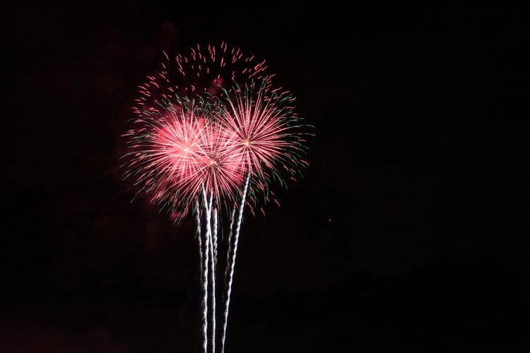 8 Best Cities to Celebrate July 4th Fireworks flowers