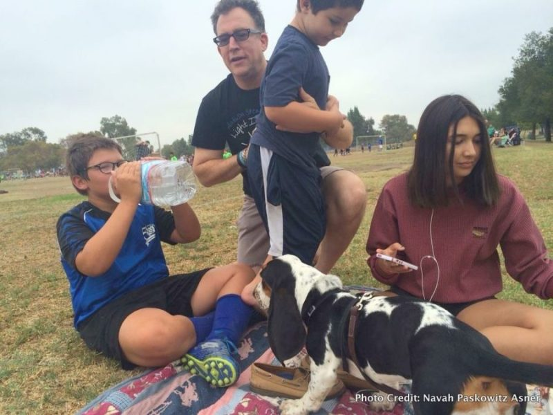 Navah Paskowitz Asner: Traveling with the Brady Bunch of Autism picnic