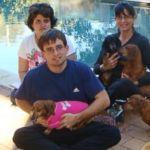 Paralysed Dog Brings Comfort to Autistic Children