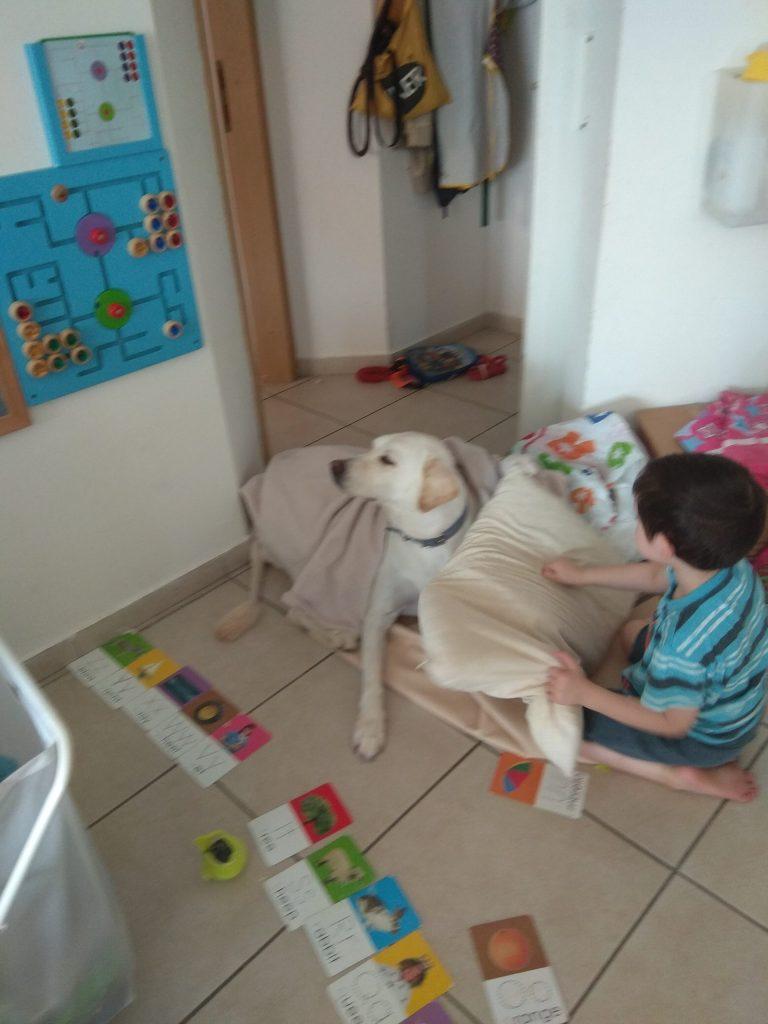 מון - הכלבה המשפחתית