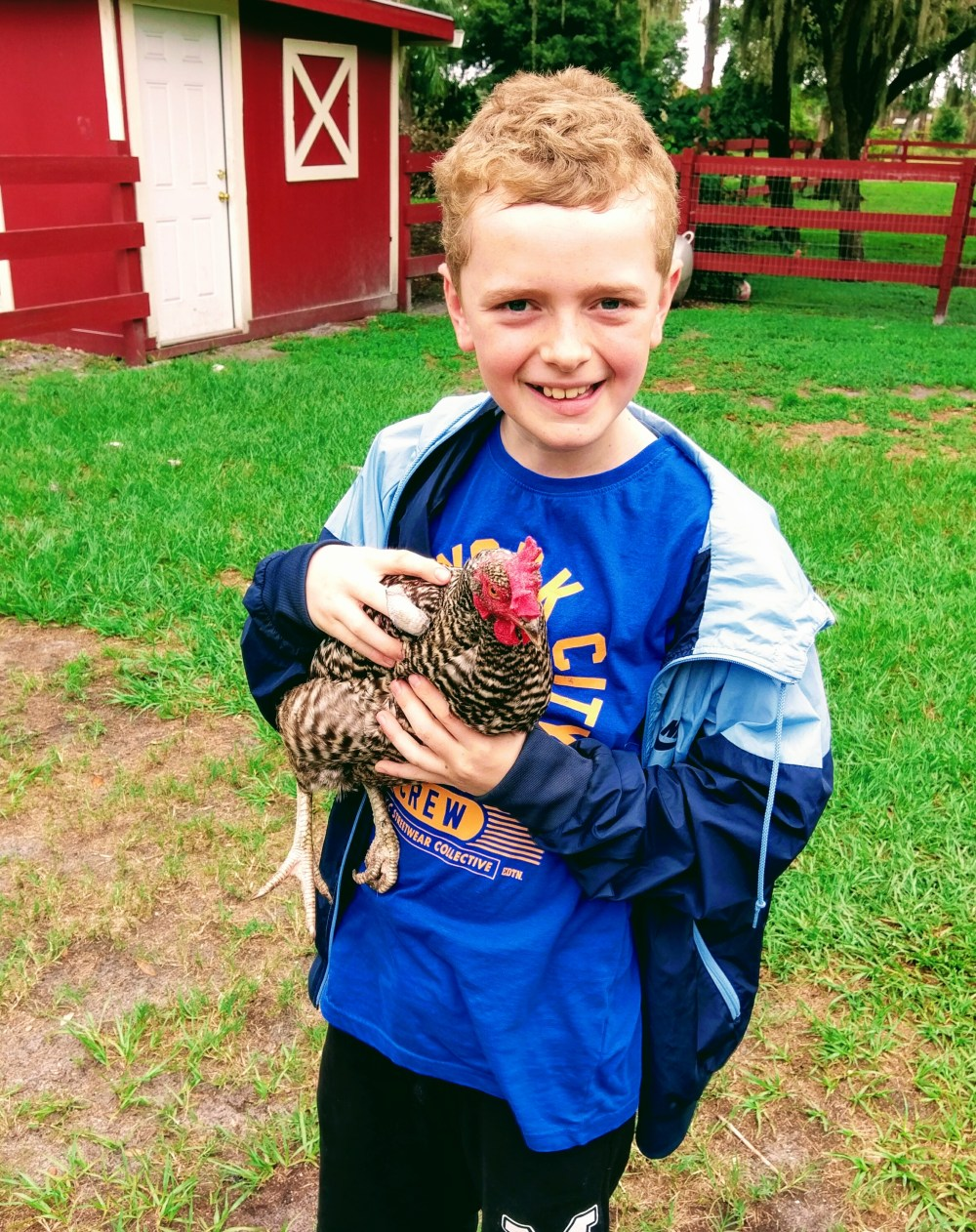 A smiling boy stood in a field and holding a chicken!