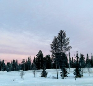 A roundup of activities you can do in Finnish Lapland