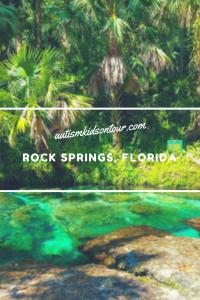Tubing at Rock Springs, Kelly Park, Florida