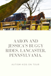 A ride on an Amish buggy with Aaron and Jessica's Buggy Rides, Lancaster Pennsylvania.
