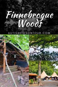 Finnebrogue Woods, Northern Ireland