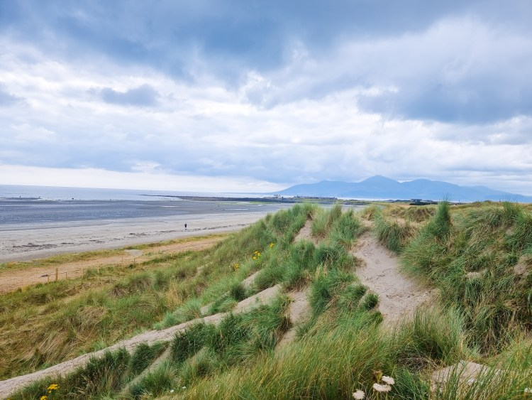Tyrella beach in Northern Ireland with vast sand, sand dunes and sea. Backed by the Morne mountains.