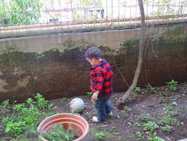 Giocando con la palla