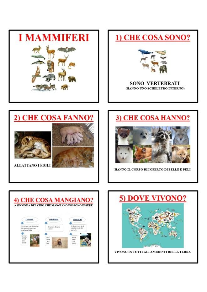 gli animali-i mammiferi_page-0002