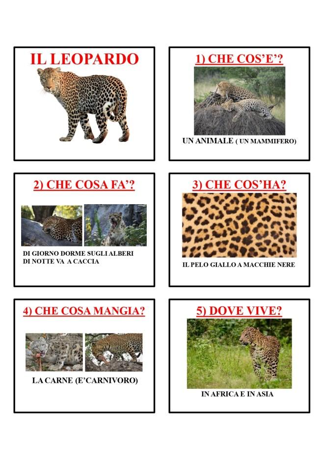 gli animali-i mammiferi_page-0026