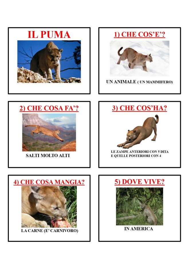 gli animali-i mammiferi_page-0036