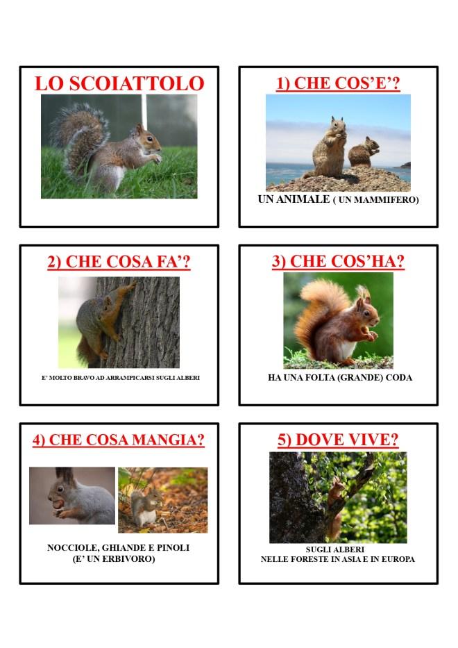gli animali-i mammiferi_page-0040