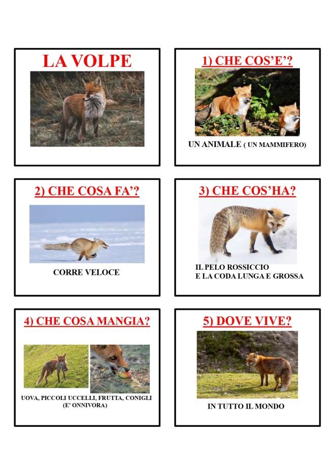 gli animali-i mammiferi_page-0045