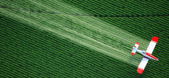 pesticidas y autismo