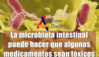 microbiota intestinal medicamentos tóxicos